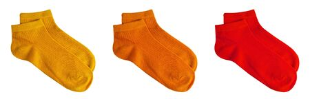 Set of short socks yellow, orange, red isolated on white background with clipping path for winter season. Top view. Pair of trendy woman cotton sock object for clothing. Beauty and fashion concept.