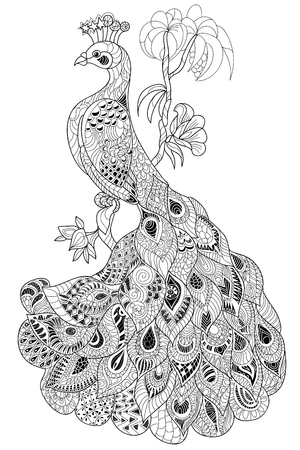 Zen-tangle stylized peacock. Hand drawn doodle vector illustration. Sketch for tattoo or coloring. Bird collection.