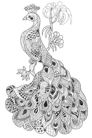 plumas de pavo real: Zen-enredo estilizado de pavo real. Dibujado a mano ilustración del doodle del vector. Boceto para tatuaje o colorantes. Colección del pájaro.