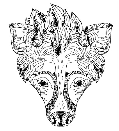 hunched: Sketch Doodle Drawing Safari hyena head Vector Illustration. Illustration