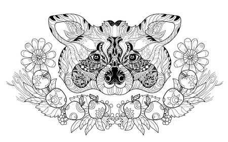 nose close up: Zentangle  raccoon head doodle. Hand drawn layered vector illustration. Sketch for tattoo or coloring pages. Animal sketch. Illustration
