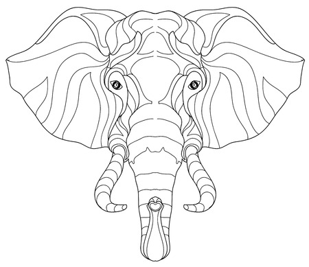 Elephant Head Doodle On White BackgroundGraphic Illustration Vector Zentangle Ready For Coloring Book