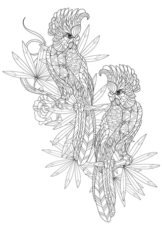 parrot tail: Zentangle stylized parrot. Hand drawn vector illustration. Sketch for tattoo or makhenda or adult coloring book. Bird collection boho style.
