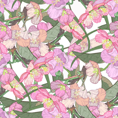 japanese apricot: Blooming plum tree hand drawn illustration.Retro vintage boho doodle.Seamless pattern Stock Photo