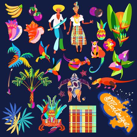 Icon set. Caribbean island tropical flowers,leaves and bird hand drawn colorful.Sea shell and palm,exotic fruits, humming-bird, crab.