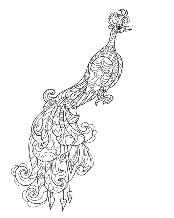 extravagant: Zen art stylized peacock in flowers. Hand drawn doodle boho vector illustration. Sketch for tattoo or anti stress adult coloring book. Bird collection.