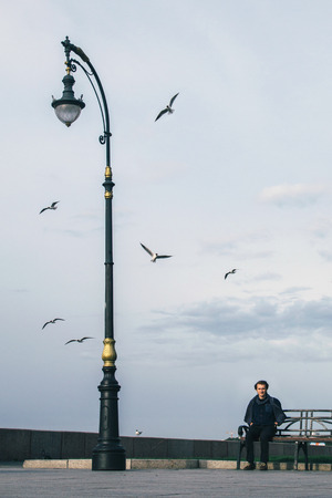 Man on the bench under a lantern surrounded by seagulls