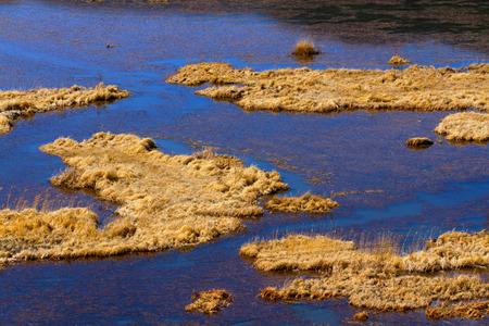 winter blues: The Lake