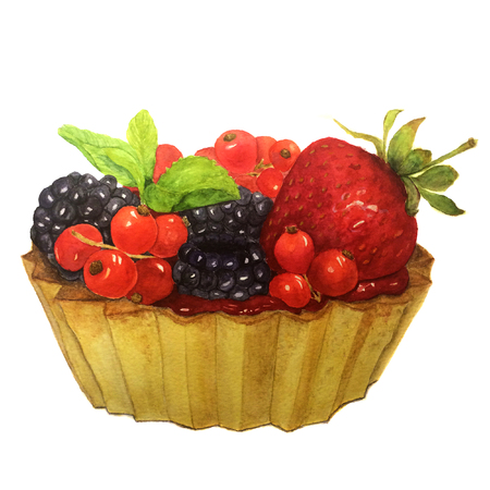 blackberries: Watercolor cake with berries: redcurrants, strawberries, blackberries and mint. Botanical illustration. For design, prints, background and textiles.