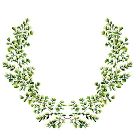 Watercolor floral border with maidenhair fern leaves. Hand painted floral wreath with branches, leaves of fern isolated on white background. For design or background.
