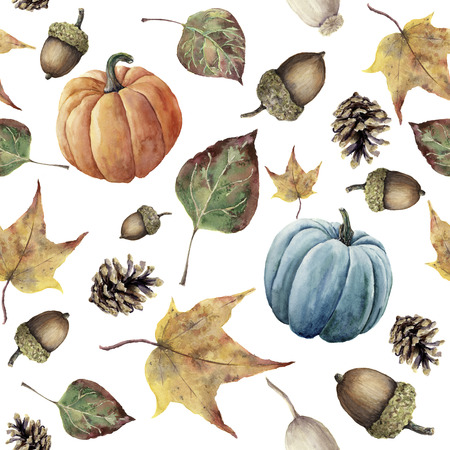 botanical illustration: Watercolor autumn seamless pattern. Hand painted pine cone, acorn, berry, yellow and green fall leaves and pumpkin ornament isolated on white background. Botanical illustration for design, print, fabric.
