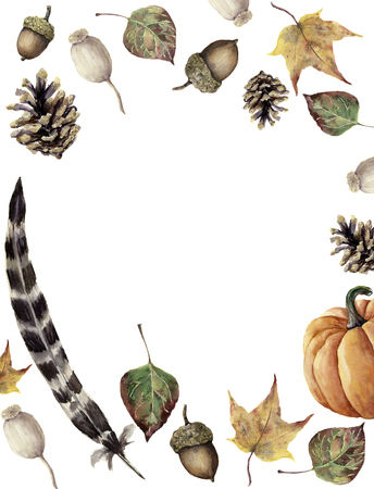 Watercolor autumn border. Hand painted pine cone, acorn, berry, yellow and green fall leaves, feather and pumpkin ornament isolated on white background. Botanical illustration for design, print