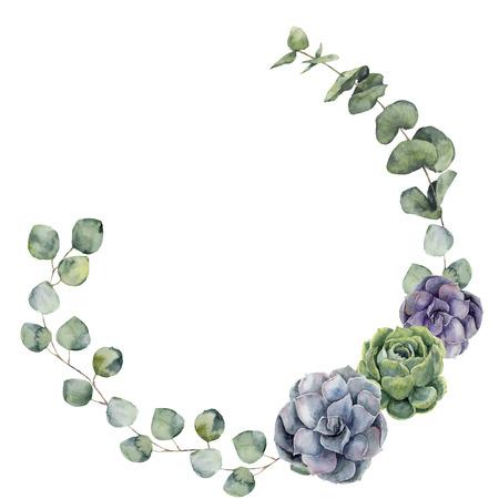 赤ちゃん、シルバー ダラー ユーカリの葉と多肉植物水彩画花境界線。手描きの枝、白い背景で隔離のユーカリの葉と花の花輪。デザインや背景。 写真素材