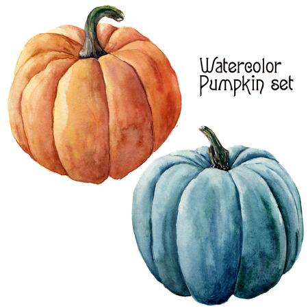 Aquarel pompoen set. Handgeschilderde oranje en blauwe groenten geïsoleerd op een witte achtergrond. Herfst pompoenprint voor ontwerp.