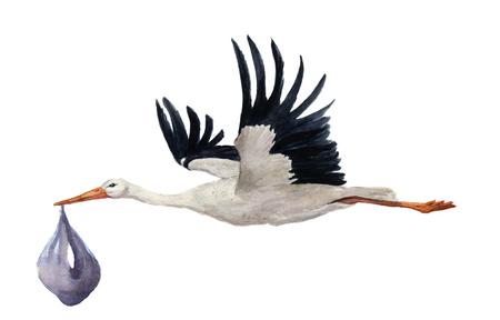 acuarela pintada a mano volando Cigüeña blanca con el bebé varón. Ciconia mano pintada ejemplo del pájaro aislado en el fondo blanco. Por diseño, impresiones o de fondo.