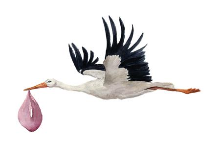 수채화 손으로 여자 아기와 함께 비행 흰 황새 그린. 손으로 그린 ciconia 조류 그림 흰색 배경에 고립. 디자인, 지문 또는 배경. 스톡 콘텐츠