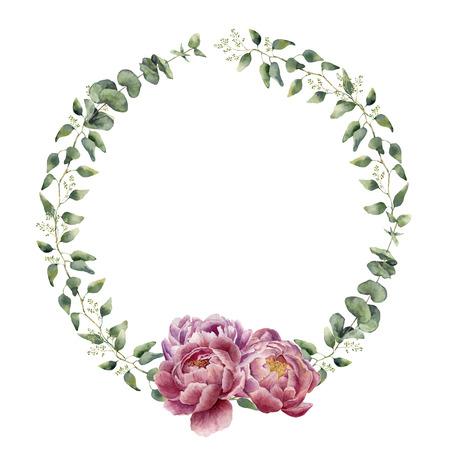 ユーカリ、赤ちゃんのユーカリの葉と牡丹の花と水彩花の花輪。手描きの枝、ユーカリ、白い背景で隔離の花の葉と花の国境。デザインや背景。