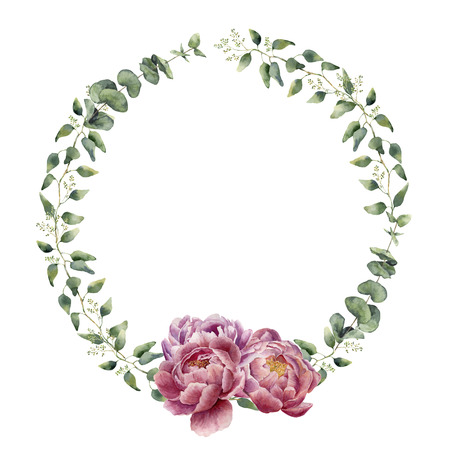 Waterverf bloemenkroon met eucalyptus, de bladeren van de babyeucalyptus en pioenbloemen. Handgeschilderde bloemenrand met takken, bladeren van eucalyptus en bloemen geïsoleerd op een witte achtergrond. Voor ontwerp of achtergrond.
