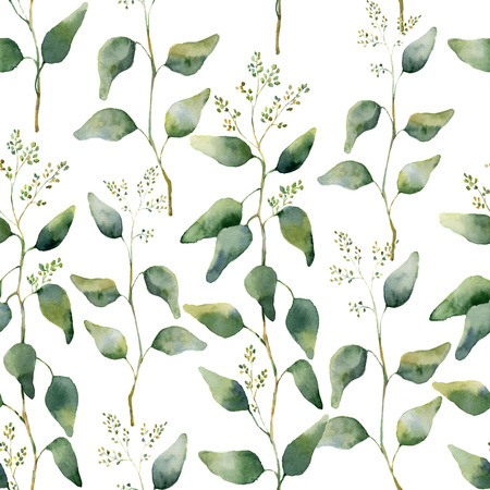 eucalyptus: Watercolor green floral seamless pattern with flowering eucalyptus. Hand painted pattern with branches and leaves of eucalyptus isolated on white background. For design or background.