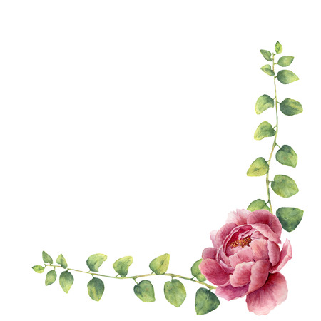 Watercolor floral wreath with leaves of twig herb and peony flowers. Hand painted floral border with branches, leaves of curly herb and flowers isolated on white background. For design or background.