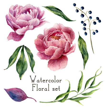 Watercolor floral elements set. Vintage leaves, eucalyptus, berries and peony flowers isolated on white background. Hand drawn botanical illustration for your design.