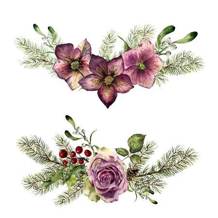Watercolor winter floral elements with fir isolated on white background. Vintage style set with christmas tree branches, rose, holly, mistletoe, hellebore flower, leaves. Flower hand painted design.