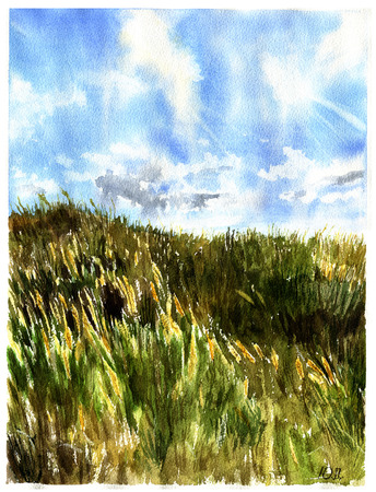 Watercolor Meadow landscape. Nature illustration for design or background. Stock Photo
