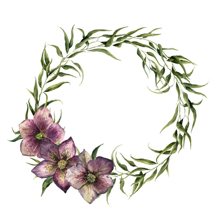 eucalyptus: Watercolor eucalyptus wreath with hellebore flowers. Eucalyptus branch and christmas roses for design, print or background. Stock Photo