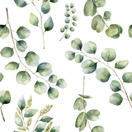 Watercolor floral pattern with eucalyptus leaves. Hand painted pattern with branches and leaves of silver dollar, baby and seeded eucalyptus isolated on white background. For design or background. 스톡 콘텐츠