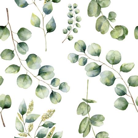 Aquarell Blumenmuster mit Eukalyptusblättern. Hand bemalt Muster mit Zweigen und Blättern von Silber-Dollar, Baby und entkernt Eukalyptus isoliert auf weißem Hintergrund. Für Design oder Hintergrund. Standard-Bild
