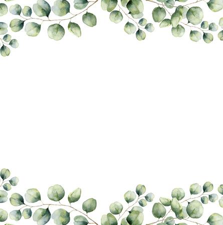 水彩の緑花のフレーム カード シルバー ダラー ユーカリの葉します。手描きの枝と白い背景に分離されたユーカリの葉が付いているボーダー。デザ