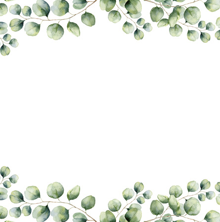 Watercolor green floral frame card with silver dollar eucalyptus leaves. Hand painted border with branches and leaves of eucalyptus isolated on white background. For design or background Foto de archivo