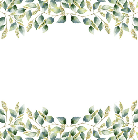 Watercolor green floral frame card with seeded eucalyptus leaves. Hand painted border with branches and leaves of eucalyptus isolated on white background. For design or background 免版税图像