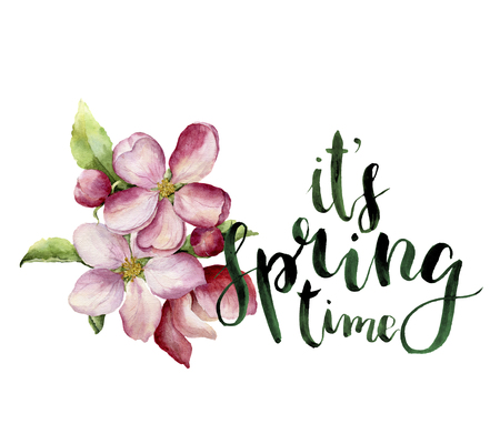 its: Watercolor apple blossom and Its spring time lettering. Hand painted floral botanical illustration isolated on white background. Pink flower for design, print or fabric.
