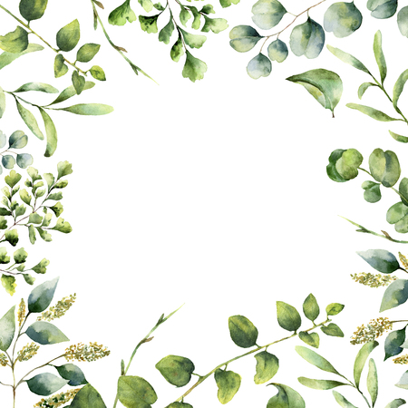 Watercolor floral frame. Hand painted plant card with eucalyptus, fern and spring greenery branches isolated on white background. Print for design or background. Zdjęcie Seryjne - 73393664