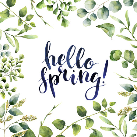 수채화 안녕하세요 봄입니다. 손을 흰색 배경에 고립 된 유칼립투스, 고사리 봄 녹지 지사와 함께 꽃 카드를 그렸다. 디자인이나 배경 인쇄합니다.