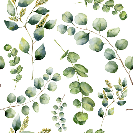 Watercolor pattern with eucalyptus. Hand painted floral ornament with silver dollar, seeded and baby eucalyptus branches isolated on white background. For fabric, print or design