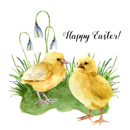 Watercolor easter card with young chicken, grass and snowdrop. Holiday print with Happy Easter lettering isolated on white background. For design. Stok Fotoğraf