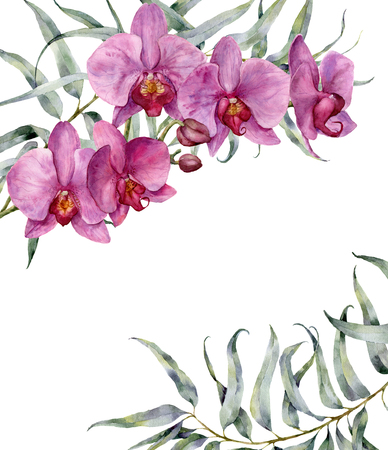 Watercolor floral card with orchids and eucalyptus leaves. Hand painted floral botanical illustration isolated on white background. For design or print. Archivio Fotografico