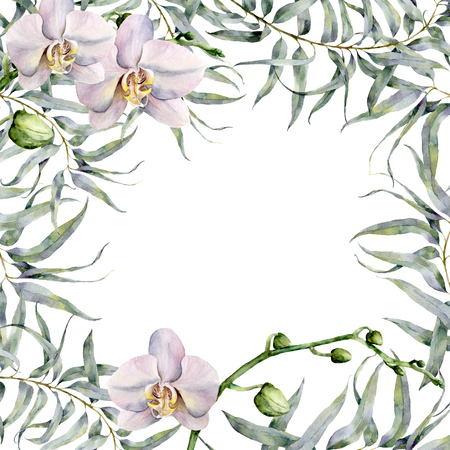 Watercolor tropic card with white orchids and eucalyptus. Hand painted floral botanical illustration with eucalyptus branch and exotic flowers isolated on white background. For design or print.