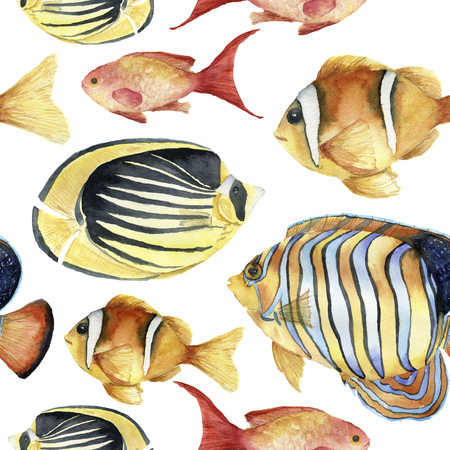 Watercolor tropic sea pattern. Hand painted tropic fish: angelfish, butterflyfish, clownfish isolated on white background. Underwater illustration.