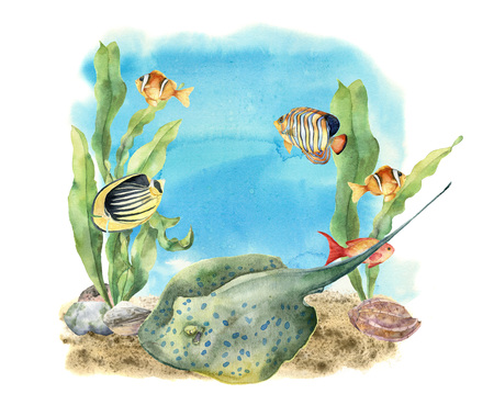 Watercolor tropic sea print. Hand painted tropic fish, seaweeds, stingray, pebbles and seashell isolated on white background. Underwater illustration for design, fabric or print.
