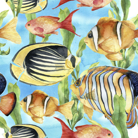 Watercolor underwater pattern. Hand painted tropic fish: angelfish, butterflyfish, clownfish and laminaria on blue background. Tropic sea illustration.