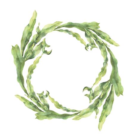 Aquarel krans met laminaria. Handgeschilderde bloemen onderwaterillustratie met de tak van algenbladeren op witte achtergrond wordt geïsoleerd die. Voor ontwerp, stof of print. Stockfoto