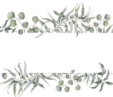 ユーカリの枝と水彩のカード。手描きの白い背景に分離されたシルバー ダラー ユーカリ丸葉と花のフレーム。デザインまたは印刷用 写真素材