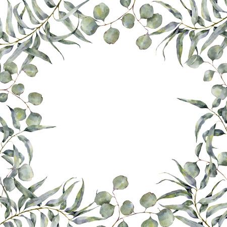 ユーカリの枝の水彩境界線。手描きの白い背景に分離されたシルバー ダラー ユーカリ丸葉と花のフレーム。デザインまたは印刷用 写真素材