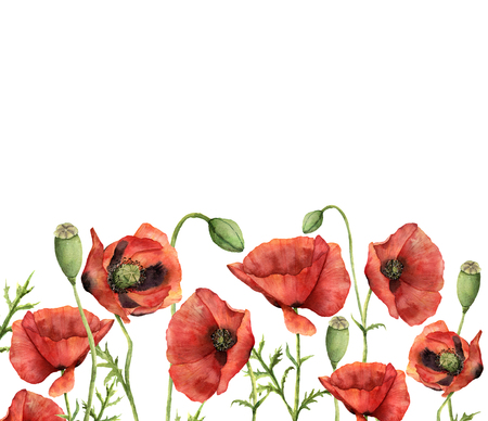 Watercolor floral card with poppies. Hand painted illustration with flowers, leaves, seed capsule and branches isolated on white background. For design, print and background