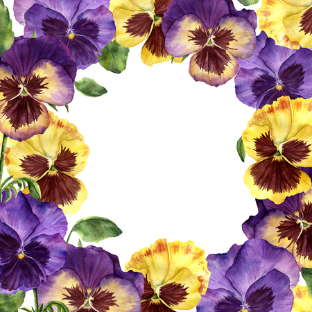 Watercolor floral card with pansy flowers. Hand painted illustra Reklamní fotografie