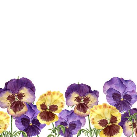 パンジーの花を水彩花の境界線。手描きのイラストを使用した、花、葉、白い背景で隔離の枝。デザイン、印刷の背景に