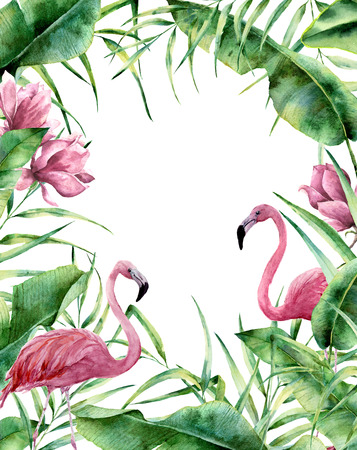 Watercolor tropical frame. Hand painted exotic floral border with palm tree leaves, banana branch, magnolia flowers and flamingo isolated on white background. For wedding and greeting design or print. Stock Photo